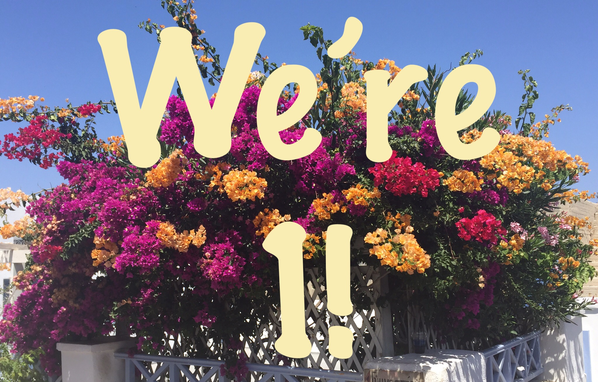 "Photo of flowers in Santorini with the text ""We're 1!"""